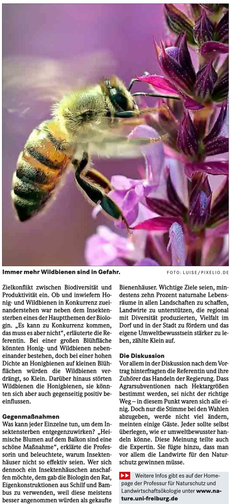 20190326_BZ_brw_insektensterben_bewegt_uns_S1_2_Page_2